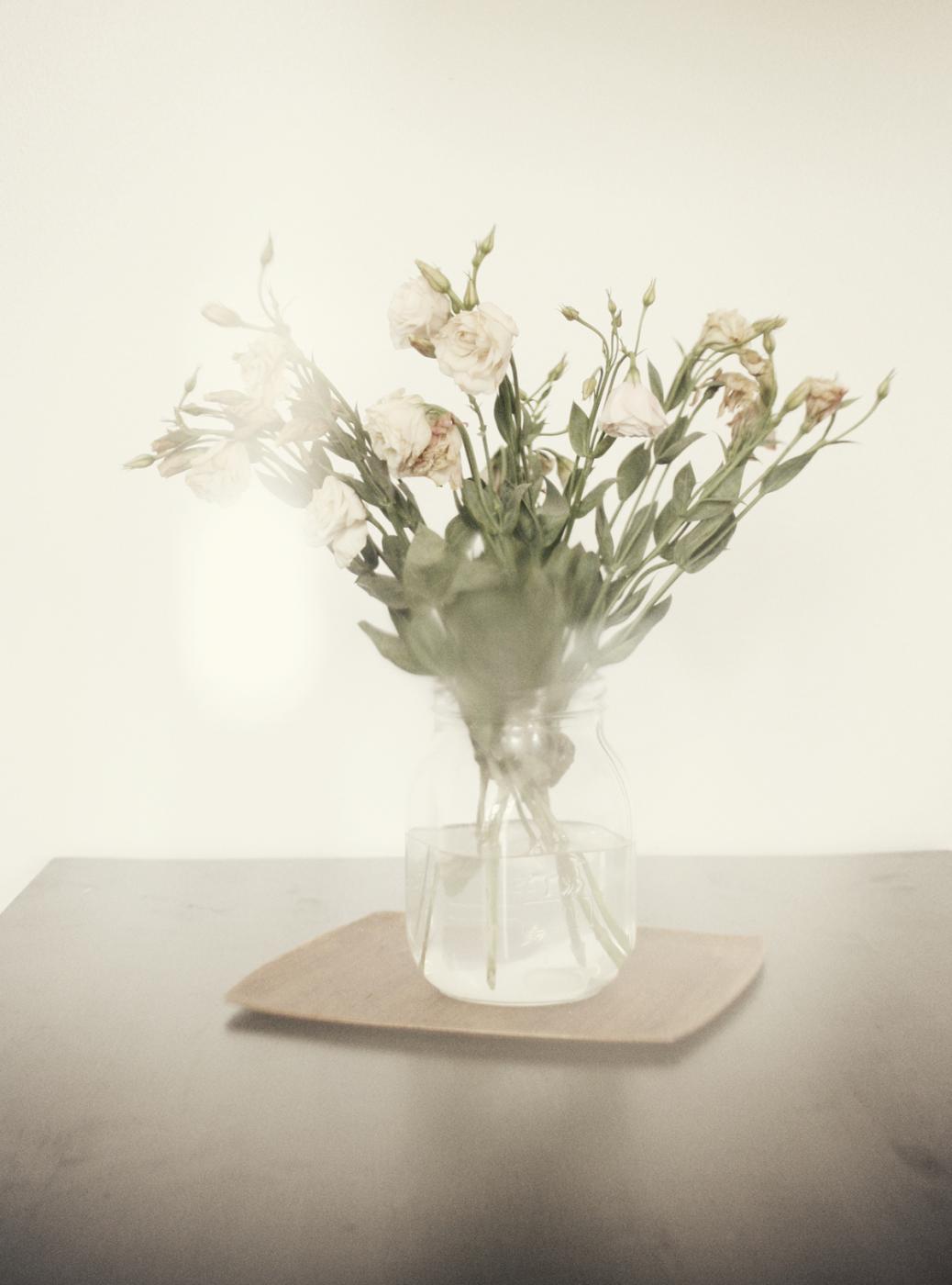 dead_flowers_090_copy.jpg